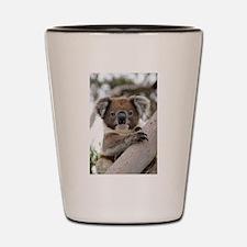 Funny Baby wild animals Shot Glass