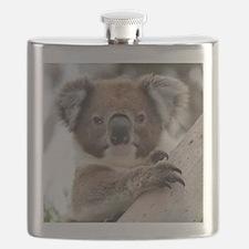 Unique Koala bear Flask