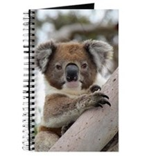 Unique Australian bear Journal
