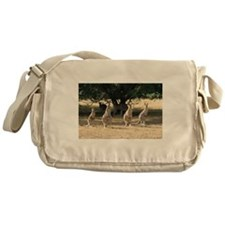Cute Animal kangaroo Messenger Bag