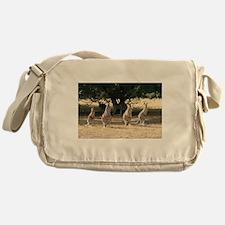 Unique Animal kangaroo Messenger Bag