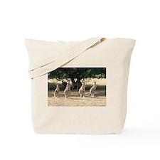 Unique Souvenir australia Tote Bag