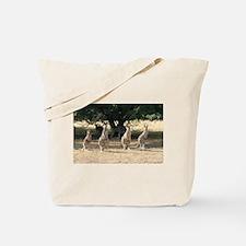 Unique Australian wildlife Tote Bag