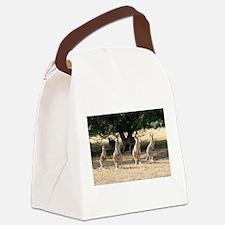 Cute Australian Canvas Lunch Bag