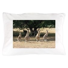 Cute Funny animal photos Pillow Case