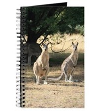 Cute Funny animal photos Journal