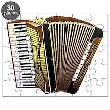 Beautiful Accordion Musical Instrument  Puzzle