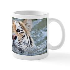 Tiger005 Mugs