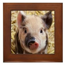 Unique Happy pig Framed Tile