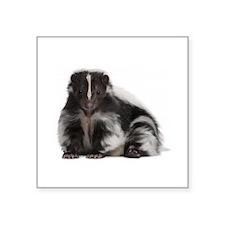 skunk / mouffette Sticker