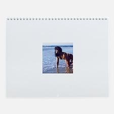 Cute Sexy women Wall Calendar