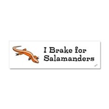 Cool I brake for Car Magnet 10 x 3