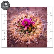 Funny Cactus flower Puzzle