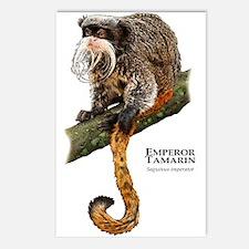 Emperor Tamarin Postcards (Package of 8)
