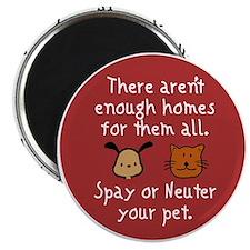 Unique Homeless pets Magnet