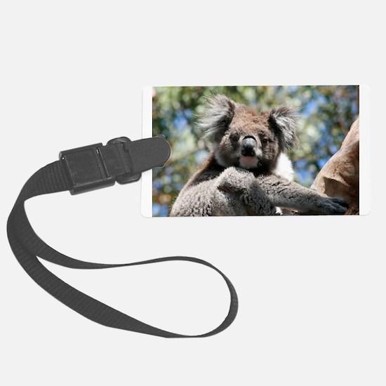 Baby Koala Bear Luggage Tag