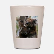 Mama and Baby Koalas Shot Glass