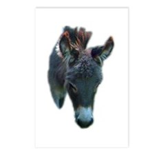 donkey face Postcards (Package of 8)