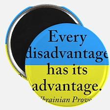 Every Disadvantage Magnet