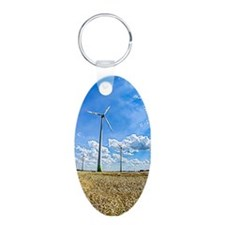 Clean Energy Keychains