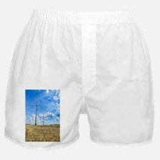 Clean Energy Boxer Shorts