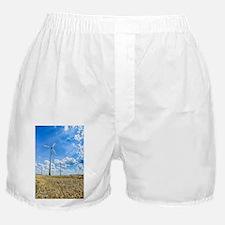 Clean Energy Boxer Shorts