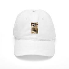 Unique Meerkat Cap