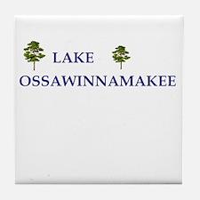 Lake Ossawinnamakee Tile Coaster