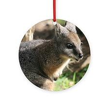 A Darned Cute Wallaby in Australia Round Ornament