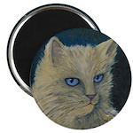 Bad Kitty Magnet