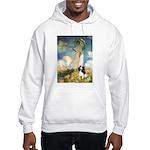 Umbrella / Tri Cavalier Hooded Sweatshirt