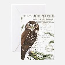 modern vintage French winter woodland owl Greeting