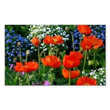 Colorful Flower Bed with Red P Decal