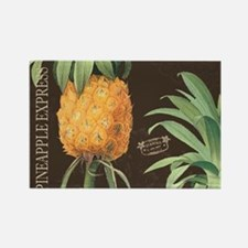 Modern vintage tropical pineapple Magnets