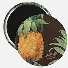 Modern vintage tropical pineapple Magnets