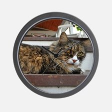 Funny Brown tabby cat Wall Clock