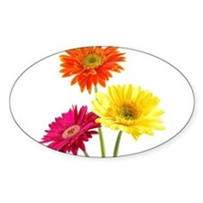 Daisy Gerbera Flower Decal