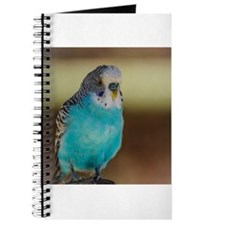 Cute Colorful cartoon parakeets Journal