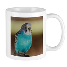 Blue Budgie Mugs