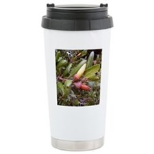 Live Oak Acorns Travel Mug
