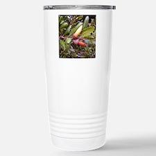 Live Oak Acorns Travel Mug