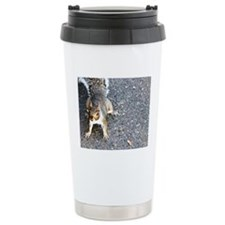 squirrel_nc.jpg Travel Mug