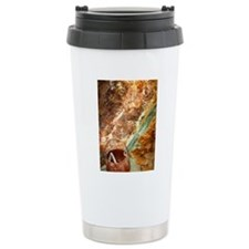 DSCI0221 Travel Mug