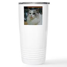DSC_0212_2 Travel Mug