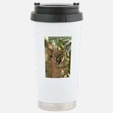 CaracalBCR060 Stainless Steel Travel Mug