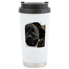 DSC00965 Travel Coffee Mug
