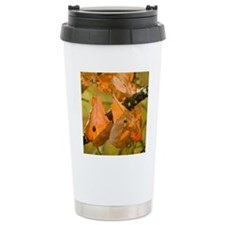 Blackjack Oak - Print Travel Mug