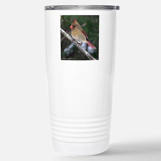 Female Cardinal Stainless Steel Travel Mug