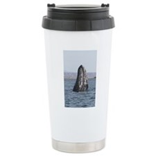 Copy of spyhop Travel Coffee Mug