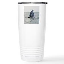 grayfluke-Cstr Travel Mug